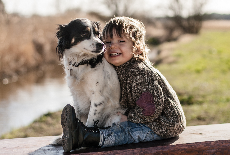 Клики для собак-мальчиков