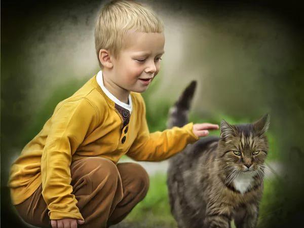 Клички для котов-мальчиков