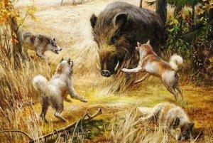 Какие клички давали животным на Руси